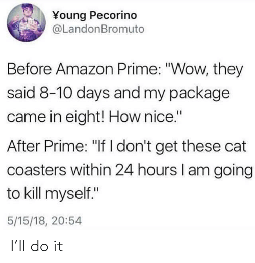 "Amazon, Amazon Prime, and Wow: Young Pecorino  @LandonBromuto  Before Amazon Prime: ""Wow, they  said 8-10 days and my package  came in eight! How nice.""  After Prime: ""If I don't get these cat  coasters within 24 hours I am going  to kill myself""  5/15/18, 20:54 I'll do it"