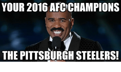 Memes, Pittsburgh Steelers, and Pittsburgh: YOUR 2016 AFC CHAMPIONS  THE PITTSBURGH STEELERS!