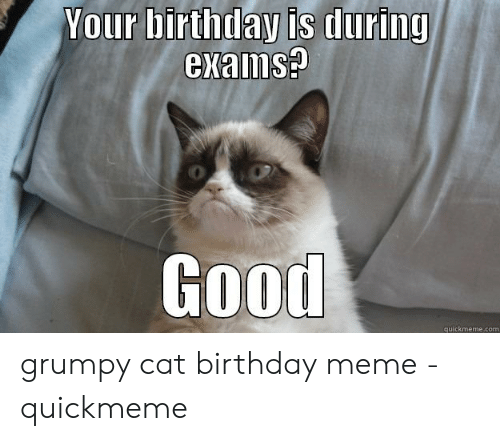Your Birthday Is During Exaims 0 Good Quickmemecom Grumpy Cat Birthday Meme Quickmeme Birthday Meme On Me Me