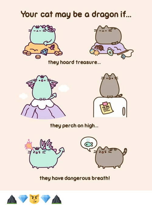 Dank, 🤖, and Dragon: Your cat may be a dragon if..  0  they hoard treasure...  they perch on high...  G3  they have dangerous breath! ⛰️💎😼💎⛰️