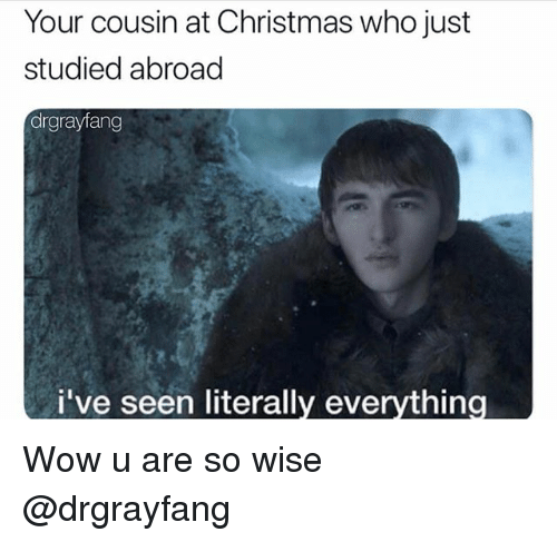 Christmas, Wow, and Dank Memes: Your cousin at Christmas who just  studied abroad  drgrayfang  i've seen literally everything Wow u are so wise @drgrayfang