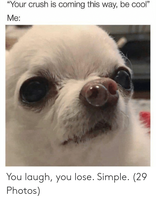 "Crush, Cool, and Simple: ""  Your crush is coming this way, be cool  ""  Me: You laugh, you lose. Simple. (29 Photos)"