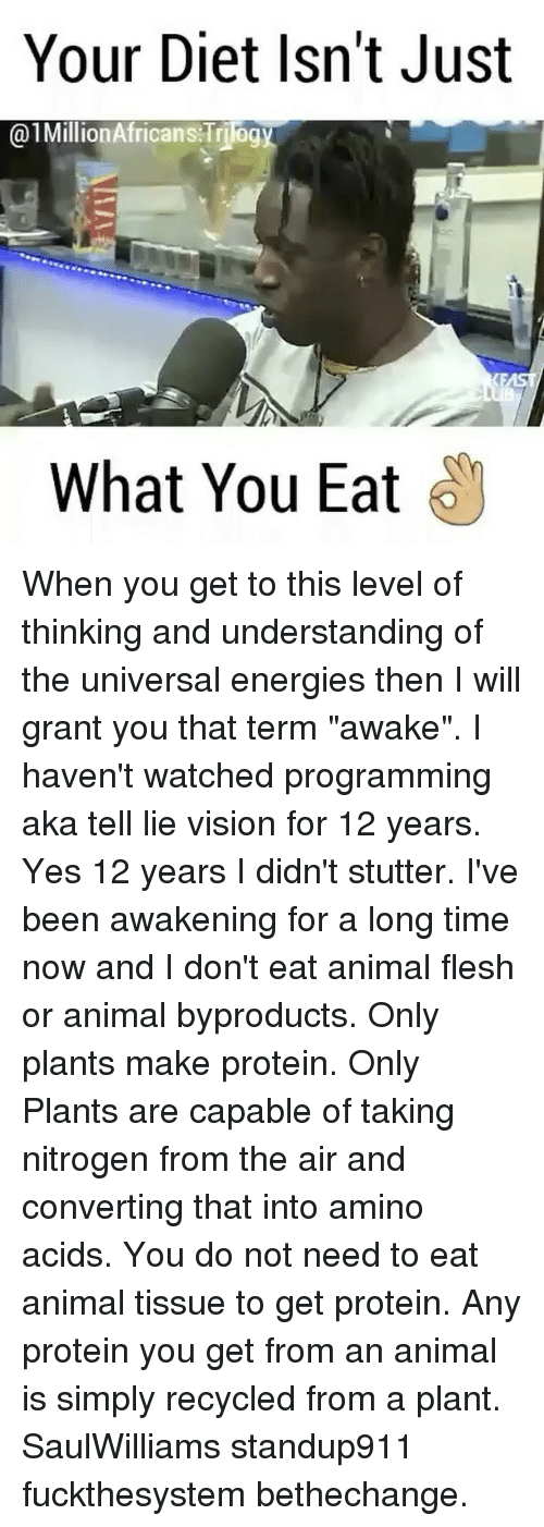 """Memes, Protein, and Vision: Your Diet Isn't Just  01Million Africans Triog  What You Eat When you get to this level of thinking and understanding of the universal energies then I will grant you that term """"awake"""". I haven't watched programming aka tell lie vision for 12 years. Yes 12 years I didn't stutter. I've been awakening for a long time now and I don't eat animal flesh or animal byproducts. Only plants make protein. Only Plants are capable of taking nitrogen from the air and converting that into amino acids. You do not need to eat animal tissue to get protein. Any protein you get from an animal is simply recycled from a plant. SaulWilliams standup911 fuckthesystem bethechange."""