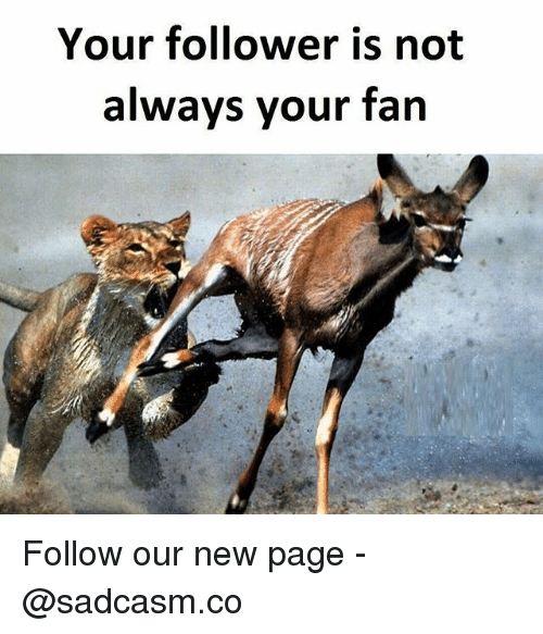 Memes, 🤖, and Page: Your follower is not  always your fan Follow our new page - @sadcasm.co