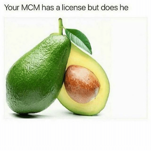 Memes, 🤖, and Mcm: Your MCM has a license but does he