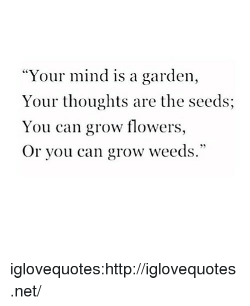"""Target, Tumblr, and Blog: """"Your mind is a garden,  Your thoughts are the seeds;  You can grow flowers,  Or you can grow weeds."""" iglovequotes:http://iglovequotes.net/"""