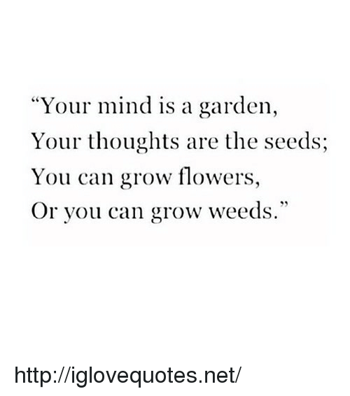 """Flowers, Http, and Mind: """"Your mind is a garden,  Your thoughts are the seeds;  You can grow flowers,  Or you can grow weeds."""" http://iglovequotes.net/"""