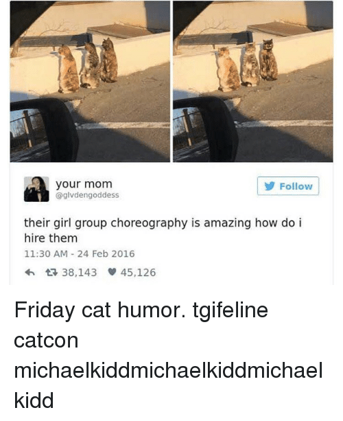 Memes, 🤖, and Cat: your mom  Follow  @glvdengoddess  their girl group choreography is amazing how do i  hire them  11:30 AM 24 Feb 2016  38,143 45,126 Friday cat humor. tgifeline catcon michaelkiddmichaelkiddmichaelkidd