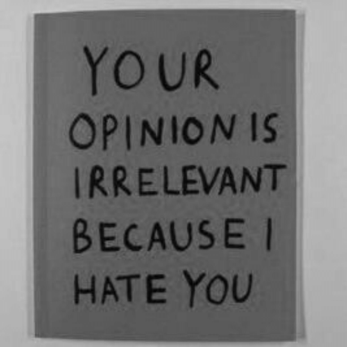 You, I Hate You, and Hate: YOUR  OPINION IS  IRRELEVANT  BECAUSE I  HATE YOU