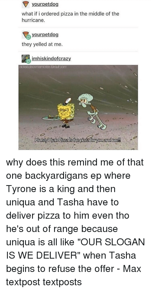 """Memes, Hurricane, and 🤖: your petdog  what if i ordered pizza in the middle of the  hurricane.  rpetdog  they yelled at me.  im hiskindofcrazy why does this remind me of that one backyardigans ep where Tyrone is a king and then uniqua and Tasha have to deliver pizza to him even tho he's out of range because uniqua is all like """"OUR SLOGAN IS WE DELIVER"""" when Tasha begins to refuse the offer - Max textpost textposts"""