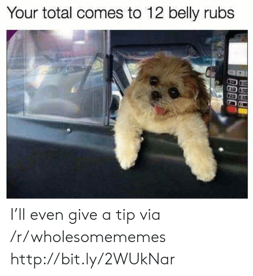 Http, Total, and Via: Your total comes to 12 belly rubs I'll even give a tip via /r/wholesomememes http://bit.ly/2WUkNar