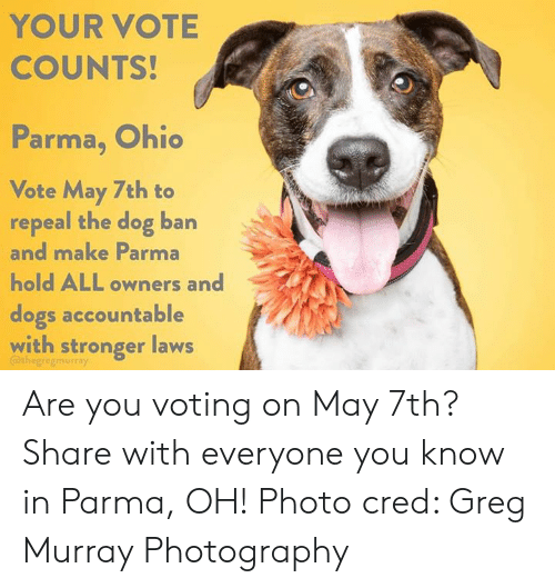 YOUR VOTE COUNTS! Parma Ohio I0 Vote May 7th to Repeal the ...