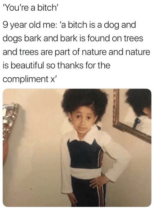 Beautiful, Bitch, and Dogs: You're a bitch'  9 year old me: 'a bitch is a dog and  dogs bark and bark is found on trees  and trees are part of nature and nature  is beautiful so thanks for the  compliment x'