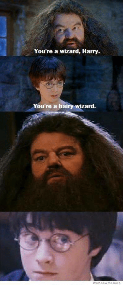 Image result for yer a hairy wizard