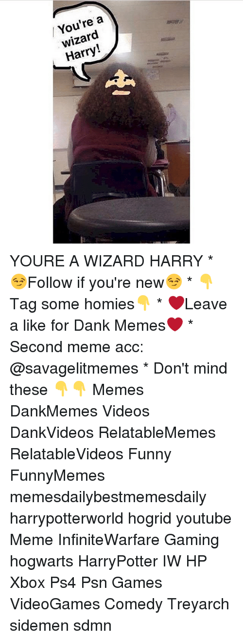 Dank, Memes, and Wizards: / You're a  wizard  Harry! YOURE A WIZARD HARRY * 😏Follow if you're new😏 * 👇Tag some homies👇 * ❤Leave a like for Dank Memes❤ * Second meme acc: @savagelitmemes * Don't mind these 👇👇 Memes DankMemes Videos DankVideos RelatableMemes RelatableVideos Funny FunnyMemes memesdailybestmemesdaily harrypotterworld hogrid youtube Meme InfiniteWarfare Gaming hogwarts HarryPotter IW HP Xbox Ps4 Psn Games VideoGames Comedy Treyarch sidemen sdmn