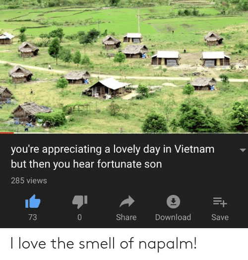 Love, Smell, and Vietnam: you're appreciating a lovely day in Vietnam  but then you hear fortunate son  285 views  73  Share  Download  Save I love the smell of napalm!