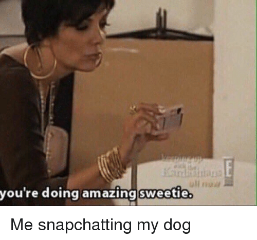 You Re Amazing To Me: You're Doing Amazing Sweetie Me Snapchatting My Dog