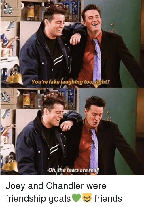 Memes, Friendship, and 🤖: You're fake laughlng too right?  Oh,the tears arerea Joey and Chandler were friendship goals💚😸 friends