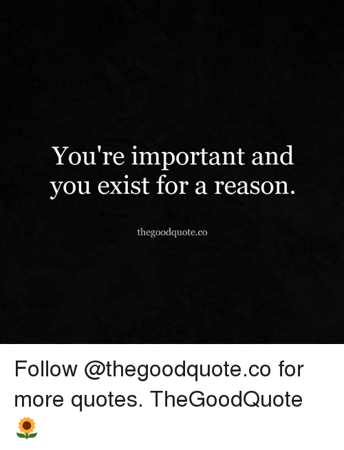 Youre Important And You Exist For A Reason Thegoodquoteco Follow