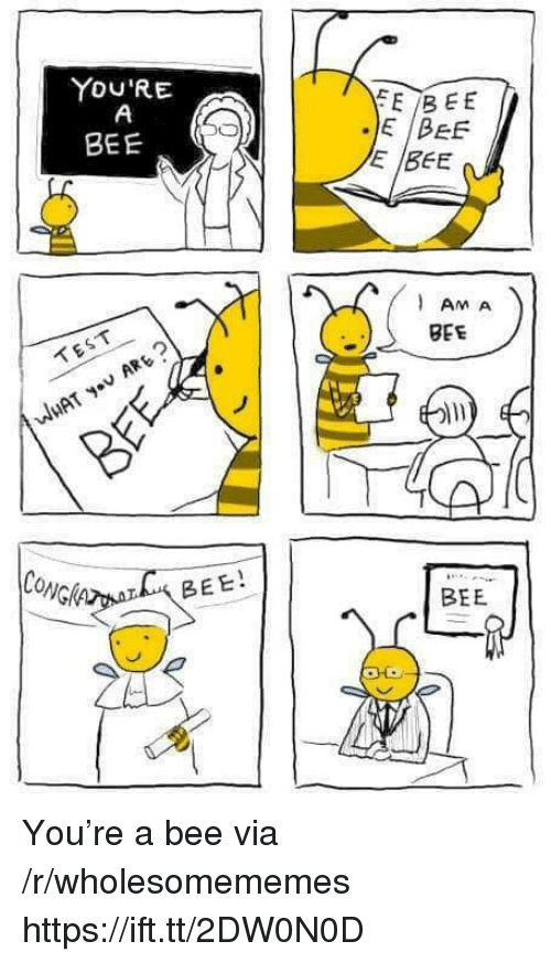 Test, Bee, and Via: YOU'RE  JE IDEE  E BEE  BEE  AM A  BEE  TEST  CONG  BEE!  BEE You're a bee via /r/wholesomememes https://ift.tt/2DW0N0D