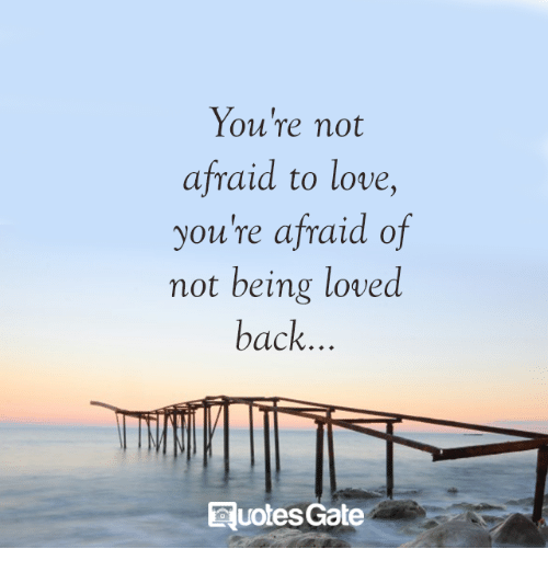 Youre Not Afraid To Love Youre Afraid Of Not Being Loved Back