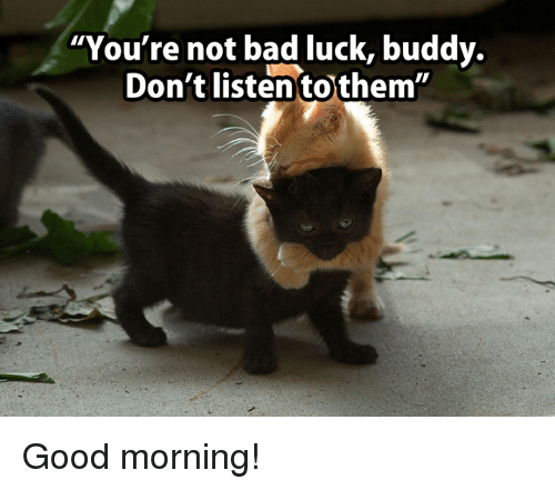 Inappropriate Good Morning Meme : Best memes about good morning