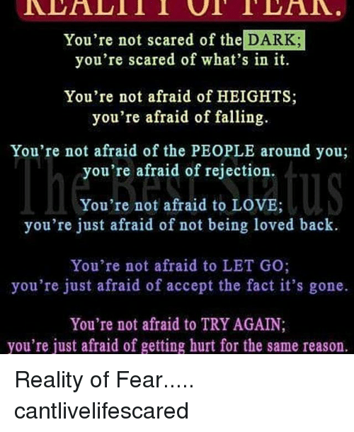 youre not scared of the da youre scared of whats 22874724 ✅ 25 best memes about reality of fear reality of fear memes
