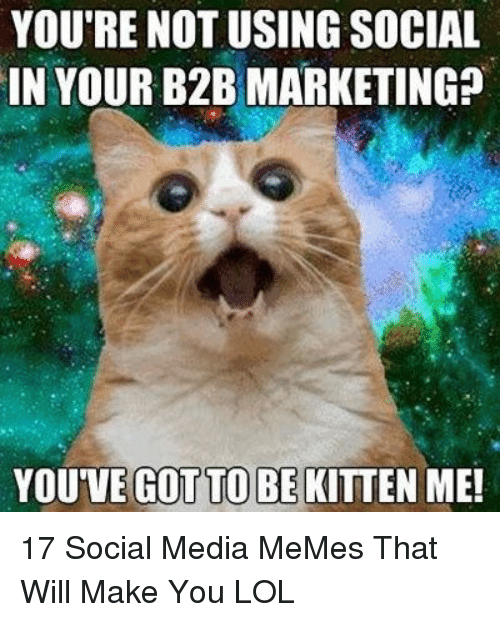 Lol, Memes, and Social Media: YOU'RE NOT USING SOCIAL  IN YOUR B2B MARKETING?  YOU'VE  GOT TO BE  KITTEN ME! 17 Social Media MeMes That Will Make You LOL