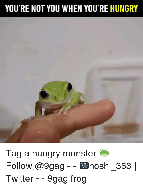 9gag, Hungry, and Memes: YOU'RE NOT YOU WHEN YOU'RE HUNGRY Tag a hungry monster 🐸 Follow @9gag - - 📷hoshi_363 | Twitter - - 9gag frog