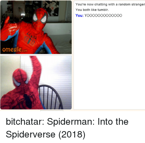 Omegle, Tumblr, and Blog: You're now chatting with a random stranger  You both like tumblr.  You: YOOOOO0OOOoO0O  omegle.com bitchatar: Spiderman: Into the Spiderverse (2018)