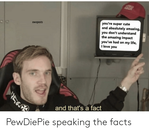 Cute, Facts, and Life: you're super cute  and absolutely amazing,  you don't understand  the amazing impact  you've had on my life,  I love you  owoposts  and that's a fact PewDiePie speaking the facts