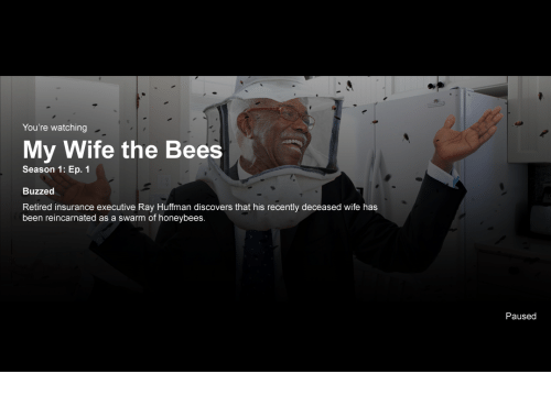 Wife, Been, and Bees: You're watching  My Wife the Bees  Season 1: Ep. 1  Buzzed  Retired insurance executive Ray Huffman discovers that his recently deceased wife has  been reincarnated as a swarm of honeybees.  Paused
