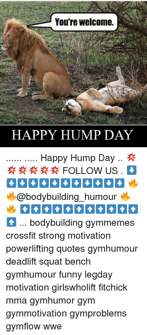 Hump Day, Memes, and 🤖: You're welcome.  HAPPY HUMP DAY ...... ..... Happy Hump Day .. 💥💥💥💥💥💥 FOLLOW US . ⬇️⬇️⬇️⬇️⬇️⬇️⬇️⬇️⬇️⬇️⬇️⬇️ 🔥🔥@bodybuilding_humour 🔥🔥 ⬆️⬆️⬆️⬆️⬆️⬆️⬆️⬆️⬆️⬆️⬆️⬆️ ... bodybuilding gymmemes crossfit strong motivation powerlifting quotes gymhumour deadlift squat bench gymhumour funny legday motivation girlswholift fitchick mma gymhumor gym gymmotivation gymproblems gymflow wwe