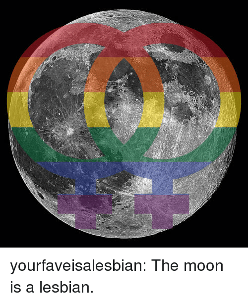 Tumblr, Blog, and Http: yourfaveisalesbian:  The moon is a lesbian.