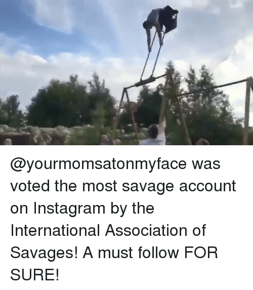 Instagram, Memes, and Savage: @yourmomsatonmyface was voted the most savage account on Instagram by the International Association of Savages! A must follow FOR SURE!