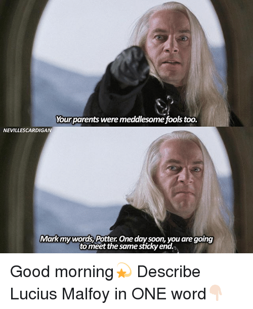 Memes, Soon..., and Good Morning: Yourparents were meddlesome fools too.  NEVILLESCARDIGAN  Markmywords, Potter One day soon, you are going  to meet the same sticky end. Good morning💫 Describe Lucius Malfoy in ONE word👇🏻