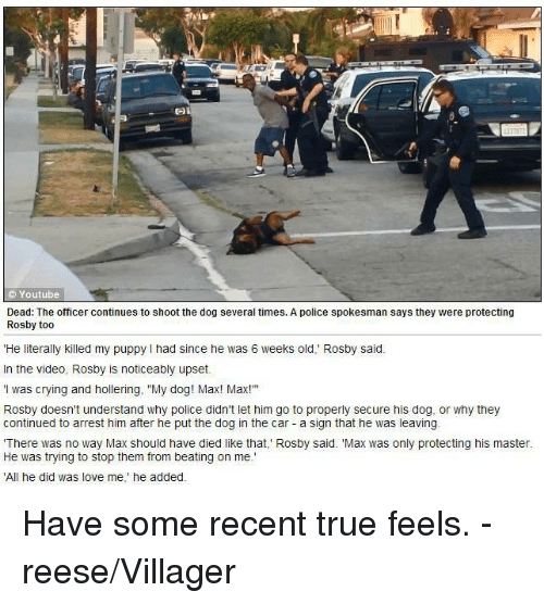 """Cars, Crying, and Dogs: Youtube  Dead: The officer continues to shoot the dog several times. A police spokesman says they were protecting  Rosby too  He literally killed my puppy l had since he was 6 weeks old,"""" Rosby said.  In the video, Rosby is noticeably upset.  'I was crying and hollering, """"My dog! Max! Max!""""  Rosby doesn't understand why police didn't let him go to properly secure his dog, or why they  continued to arrest him after he put the dog in the car a sign that he was leaving  There  was no way Max should have died like that,' Rosby said. """"Max as only protecting his master  He was trying to stop them from beating on me.  'All he did was love me,"""" he added. Have some recent true feels. -reese/Villager"""
