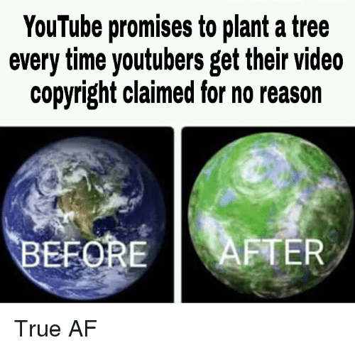 Af, True, and youtube.com: YouTube promises to plant a tree  every time youtubers get their video  copyright claimed for no reason  EFOREAFTER True AF