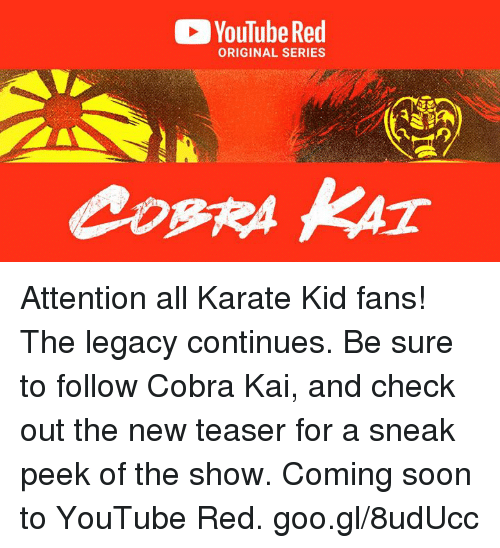 Dank, Soon..., and youtube.com: YouTube Red  ORIGINAL SERIES Attention all Karate Kid fans! The legacy continues. Be sure to follow Cobra Kai, and check out the new teaser for a sneak peek of the show. Coming soon to YouTube Red. goo.gl/8udUcc