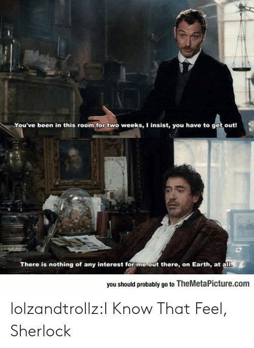 Tumblr, Blog, and Earth: You've been in this room for two weeks, I insist, you have to get out!  There is nothing of any interest for moout there, on Earth, at a  you should probably go to TheMetaPicture.com lolzandtrollz:I Know That Feel, Sherlock