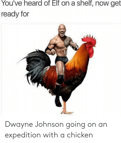 You Ve Heard Of Elf On A Shelf Now Get Ready For Dwayne