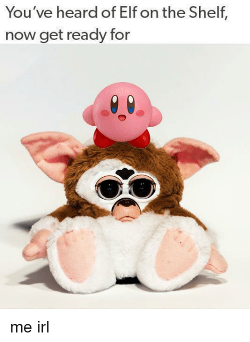 Elf, Elf on the Shelf, and Irl: You've heard of Elf on the Shelf,  now get ready for