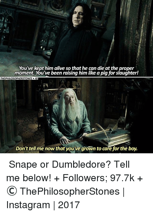 Alive, Dumbledore, and Instagram: You've kept him alive so that he can die at the proper  moment. You've been raising him like a pig for slaughter!  THEPHILOSOPHERSTONES IG  Don't tell me now that you've grown to carefor the boy. ⠀⠀⠀⠀↡ Snape or Dumbledore? Tell me below! + Followers; 97.7k + © ThePhilosopherStones | Instagram | 2017
