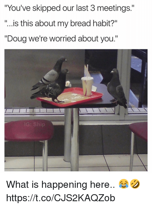 """Doug, What Is, and Bread: """"You've skipped our last 3 meetings.""""  """"...is this about my bread habit?""""  """"Doug we're worried about you.""""  IG: Ship What is happening here.. 😂🤣 https://t.co/CJS2KAQZob"""