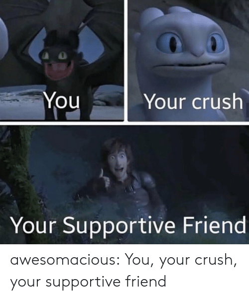 Crush, Tumblr, and Blog: YouYour crush  Your Supportive Friend awesomacious:  You, your crush, your supportive friend