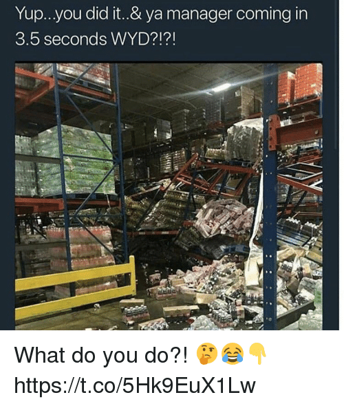 Wyd, Did, and You: Yup...you did it..& ya manager coming in  3.5 seconds WYD?1? What do you do?! 🤔😂👇 https://t.co/5Hk9EuX1Lw