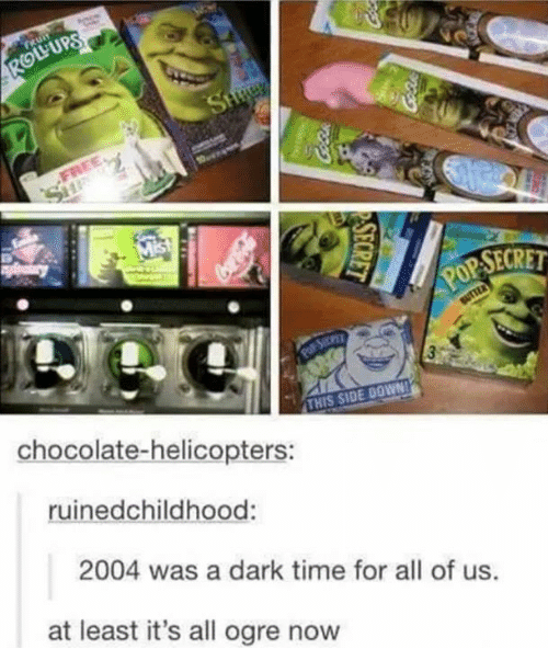 Funny, Chocolate, and Time: YUPS  SECRET  THIS SIDE DOWN  chocolate-helicopters:  ruinedchildhood:  2004 was a dark time for all of us  at least it's all ogre now