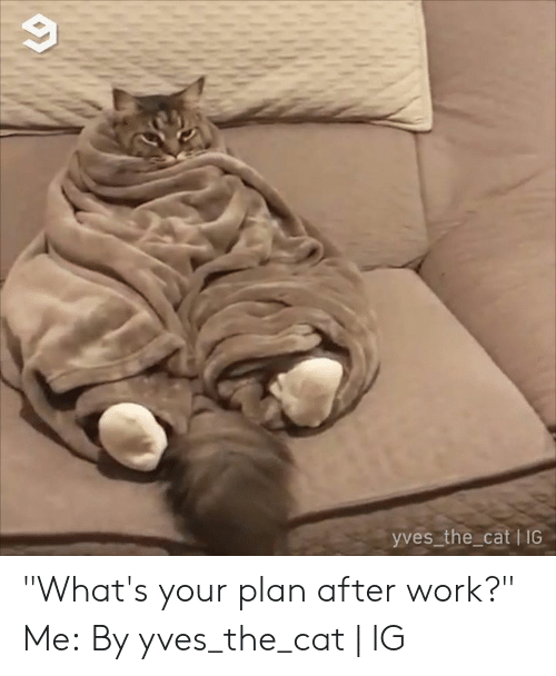 "Dank, Work, and 🤖: yves the cat I IG ""What's your plan after work?"" Me:  By yves_the_cat 