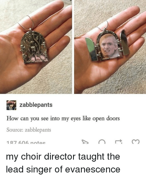 Evanescence, Tumblr, and Singer: zabblepants  How can you see into my eyes like open doors  Source: zabblepants  127 An Anntac my choir director taught the lead singer of evanescence