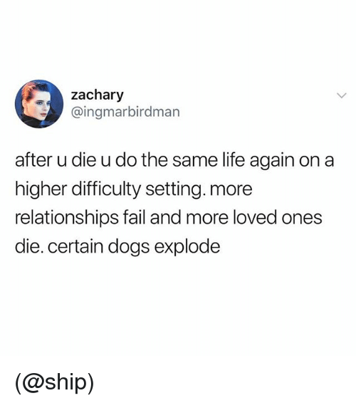 Dogs, Fail, and Life: zachary  @ingmarbirdman  after u die u do the same life again on a  higher difficulty setting. more  relationships fail and more loved ones  die.certain dogs explode (@ship)